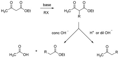 Acetoacetic Ester Synthesis