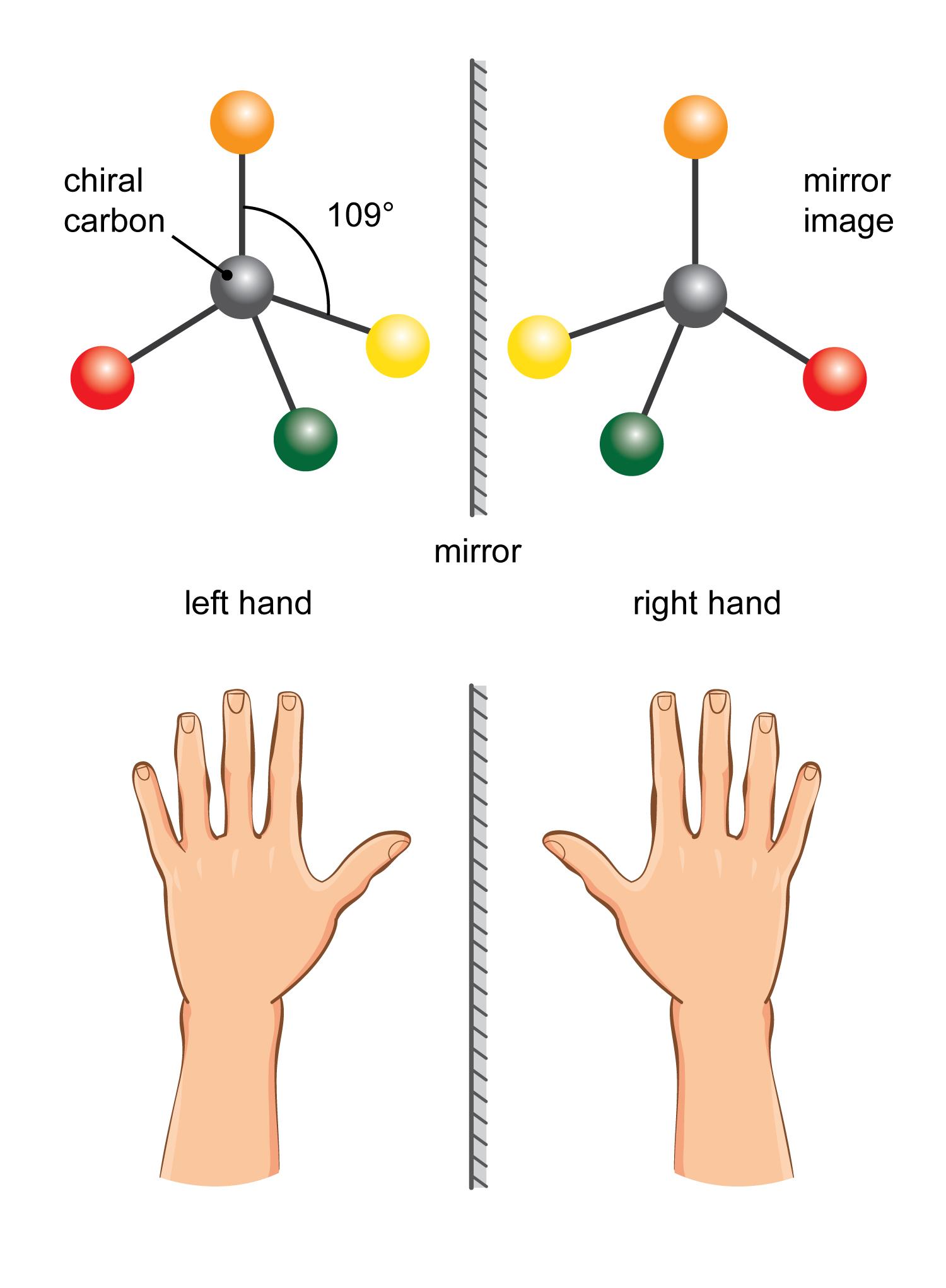 Maths skills - Geometry - Developing Understanding - Introducing ...