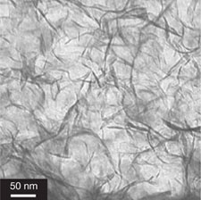 Clay nanosheets within the hydrogel