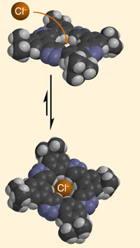 Macrocycle chloride binding