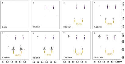 NMR spectra