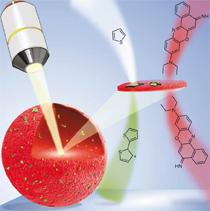 catalyst cracking zeolite microscopy