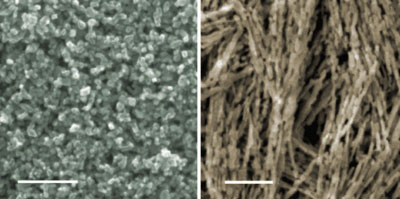 Nanowire and nanoparticle electrodes