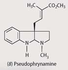 Chemical structure - pseudophrynamine