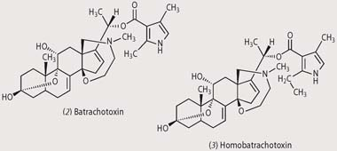 Chemical structures - batrachotoxin and homobatrachotxin