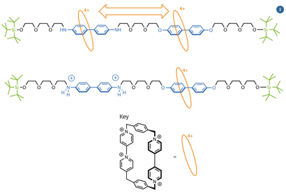 Stoddart's molecular shuttle - chemical structures
