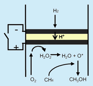 Methane oxidised to methanol in fuel cell