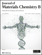 Cover image for Journal of Materials Chemistry B
