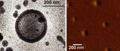 Polymer vesicles