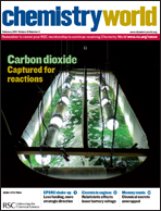 Cover image for February 2011