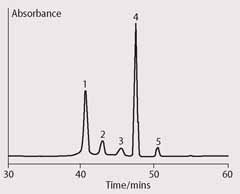 Fig 1  HPLC chromatogram showing products of chlorophyll a autoxidation after storage in acetone
