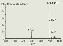 Fig 3  Mass spectrum of phaeophytinised chlorophyll a