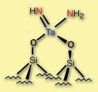 The tantalum-nitrogen complex