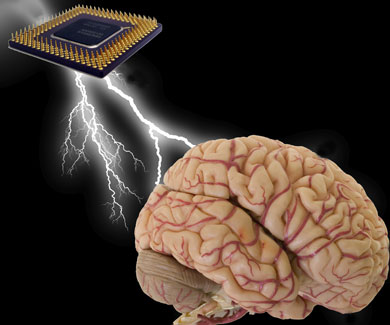 Chip to analyse changes in the brain