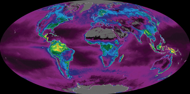 False-colour map representing the Earth's carbon metabolism