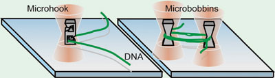 tiny hook and bobbins holding DNA strands