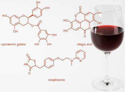 Glass of red wine with polyphenol structures