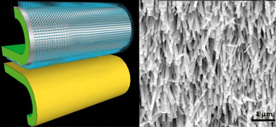Zinc oxide nanowires and gold film on flexible substrates