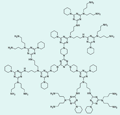 The dendrimer intermediate