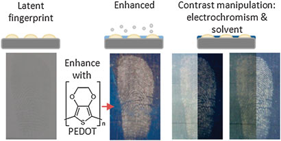 Enhanced latent fingerprint