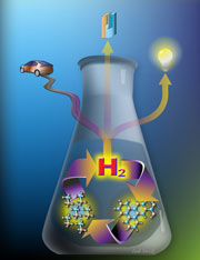 Hydrogen storage and material regeneration