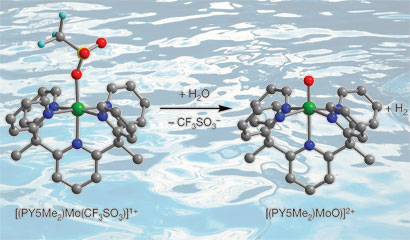 molybdenum-oxo species generates hydrogen from sea water